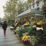 Las Ramblas - Barcellona - Archivio Turespaña-Ufficio Spagnolo del Turismo